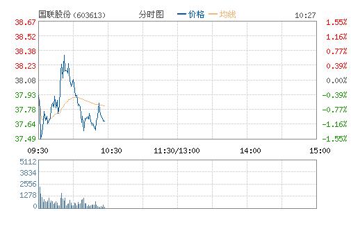 国联股份(603613)股票行情